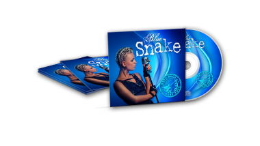 CD/DVD Mailer